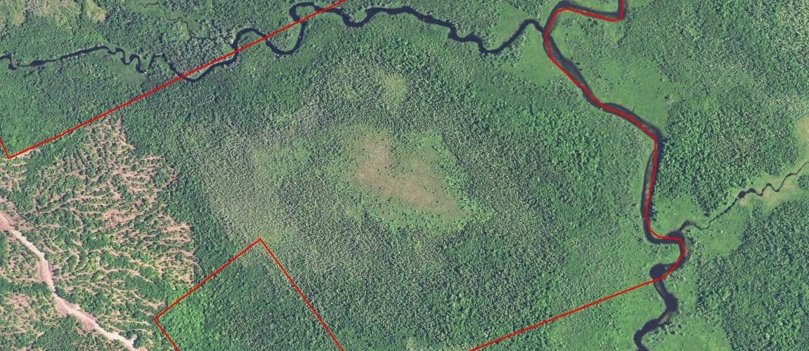 The Dennysville River Forest - Satellite