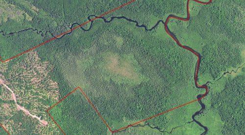 The Dennysville River Forest - Satellite